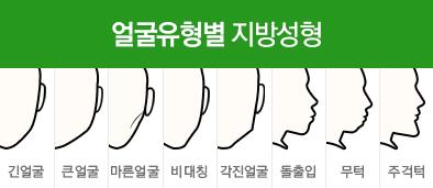 얼굴유형별 지방성형
